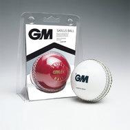 Gunn & Moore Skills Ball Red Senior