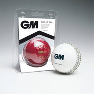 Gunn & Moore Skills Ball White Senior