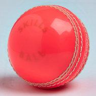 Gunn & Moore Skills Ball Pink Senior